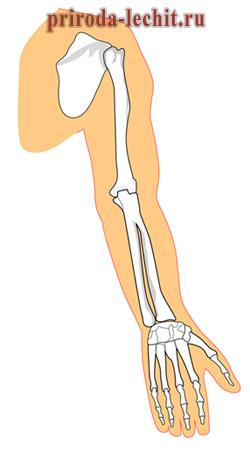 Лечение артроза и артрита коленного сустава народными методами рекомендации советы рецепты методы для лечения суставов и позвоночника p=11
