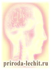 симптомы и лечение склероза сосудов, склероз сосудов головного мозга